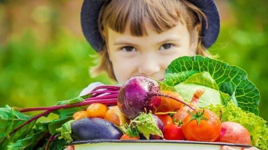 Diet, Environment & Lifestyle will have a Major Impact on Your Child's Performance in Life